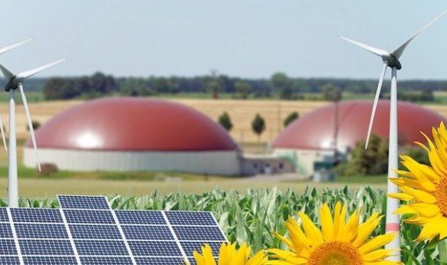 FORMAZIONE-Manager dell'agroenergia? In Sardegna si può  se adeguatamente formati e con le competenze. Dal Sistema Confartigianato 51 posti a sostegno della creazione d'impresa: scadenza iscrizioni il 1° agosto