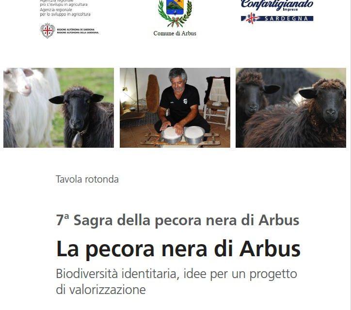 ARBUS – Venerdì 28 luglio una tavola rotonda sulla valorizzazione della pecora nera. Carne, latte, formaggio e lana pronti per il mercato ma occorrono strategie condivise di sviluppo.