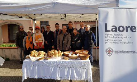 """PANE – Conclusa la prima edizione di """"Panifici aperti-Le vie del pane"""", iniziativa regionale per la valorizzazione del pane sardo di Confartigianato Sardegna e Laore Sardegna."""